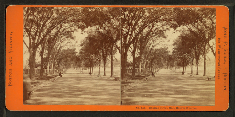 stereoscopic-photo